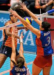 08-08-2014 NED: FIVB Grand Prix Nederland - Puerto Rico, Doetinchem<br /> Celeste Plak slaat de bal in het blok van Mojica