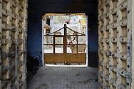 A doorway in Mandvi, Gujarat.