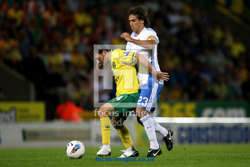 Wes Hoolahan of Norwich is fouled by Leo Ponzio of Real Zaragoza during a pre season friendly at Carrow Road stadium, Norwich...Picture by Paul Chesterton/Focus Images Ltd.  07904 640267.3/8/11