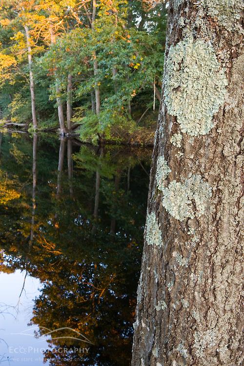 The Ipswich River in Ipswich Massachusetts USA