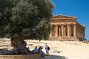 Tourists under the ancient Olive Tree of Concordia at Temple of Concord ( Concordia) in Valley of the Temples, Agrigento, Sicily