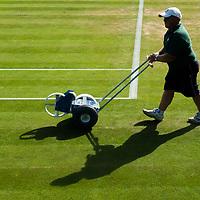 Features Wimbledon 2017