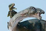 Goseong Dinosaur Museum. Dinosaur fight display.
