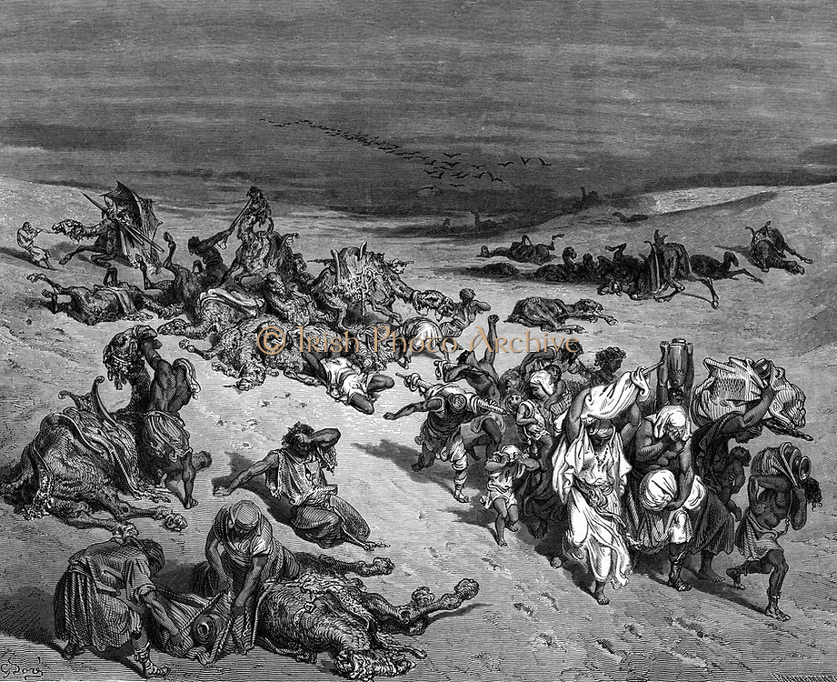Pestilence' one of the Seven Plagues of Egypt: Exodus.  Illustration by Gustave Dore (1832-1883) French painter and book illustrator for 'The Bible' (London 1866). Wood engraving.