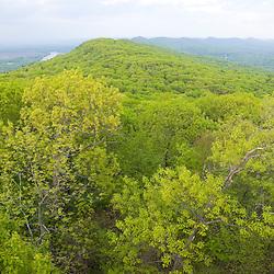 Spring on Mount Tom in Hoyoke, Massachusetts. New England Trail.