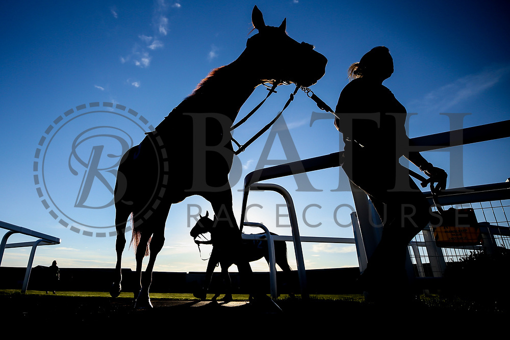Horses enter the parade ring - Mandatory by-line: Robbie Stephenson/JMP - 25/06/2020 - HORSE RACING - Bath Racecoure - Bath, England - Bath Races 25/06/20