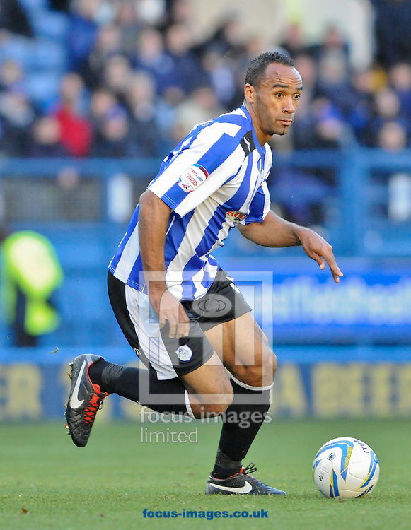 Picture by Richard Land/Focus Images Ltd +44 7713 507003.03/11/2012.Chris O'Grady of Sheffield Wednesday in action during the npower Championship match at Hillsborough, Sheffield.