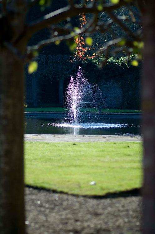 Fountain Arley Arboretum, Worcestershire.
