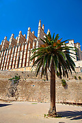 Cathedral, Palma de Mallorca, Balearic Islands, Spain