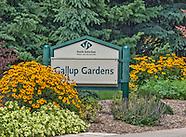 Ketring/Gallup Park