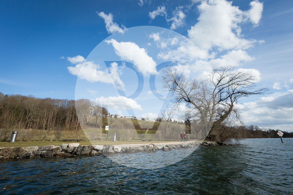 SCHWEIZ - MEISTERSCHWANDEN - Baum am Seeufer - 03. März 2015 © Raphael Hünerfauth - http://huenerfauth.ch