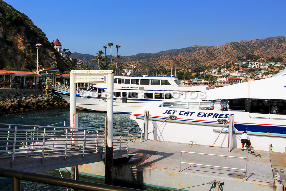 Catalina and Jet Cat Express Docked at Avalon Port Catalina Island