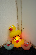 Rubber duckies in a moldy bathtub.
