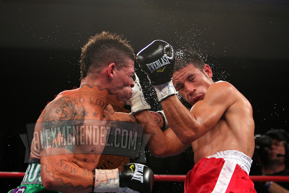"Orlando Cruz, (green trunks)  fights against Jorge Pazos at the Kissimmee Civic Center in Kissimmee, Florida, on Friday, October 19, 2012. The Puerto Rican Cruz recently described himself as ""a proud gay man"" and the first active boxer having pronounced so, in boxing history. (AP Photo/Alex Menendez)"