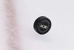 Nov 7, 2011; San Jose, CA, USA; Detailed view of a hockey puck on the ice before the game between the San Jose Sharks and the Los Angeles Kings at HP Pavilion.  San Jose defeated Los Angeles 4-2. Mandatory Credit: Jason O. Watson-US PRESSWIRE