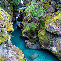 Avalanche Canyon and Creek, located on the Trail of the Cedars Nature Trail, Glacier National Park, Montana