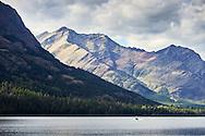 A park ranger boat patrols Waterton Lake in the Waterton-Glacier International Peace Park, Montana.