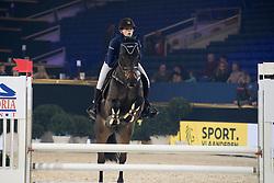 Wuijts Gitte, BEL, Romeo<br /> Super Final Youth Cup LRV-VLP<br /> Vlaanderens Kerstjumping Memorial Eric Wauters - Juming Mechelen 2016<br /> © Dirk Caremans<br /> 26/12/2016er