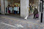 A pet dog pees on the street corner on 4th May 2017, in London, England.