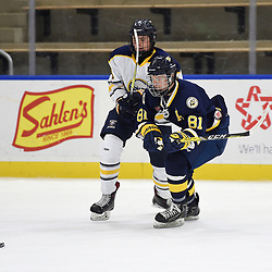 BUFFALO, NY - SEP 19,  2017: Ontario Junior Hockey League Governors Showcase game between the Buffalo Jr. Sabres and the Whitby Fury, Jeffrey Gauld #81 of the Whitby Fury battles for the puck during the first period.<br /> (Photo by Andy Corneau / OJHL Images)