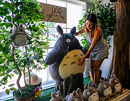 7月28日,美国洛杉矶,工作人员在吉卜力工作室整理毛绒玩具龙猫。由日本动画大师宫崎骏成立的吉卜力工作室在洛杉矶开设美国首家官方快闪店,成为宫崎骏迷必访之处。该店将开业到下月24日。新华社发 (赵汉荣摄)<br /> A staff decorates the stuffed toys &quot;Totoro&quot; at the JapanLA on June 28, 2017 in Los Angeles, the United States. The cute culture shop JapanLA launched the first official U.S. Studio Ghibli pop-up, which runs until July 24.  (Xinhua/Zhao Hanrong)(Photo by Ringo Chiu)<br /> <br /> Usage Notes: This content is intended for editorial use only. For other uses, additional clearances may be required.