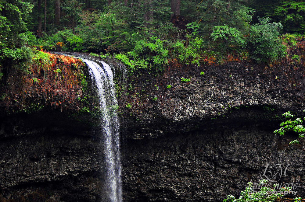 South Falls in Silver Falls State Park spilling over the edge