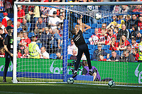 Football - 2018 / 2019 Premier League - Brighton and Hove Albion vs. Southampton<br /> <br /> When your the shorter ball boy and they all leave you to clear the top of the net at The Amex Stadium Brighton <br /> <br /> COLORSPORT/SHAUN BOGGUST