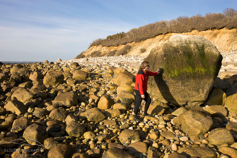A large boulder at the beach at the Center Hill Preserve in Plymouth, Massachusetts.  Cape Cod Bay.