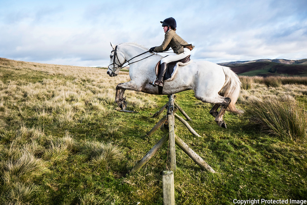 Jedburgh, Scottish Borders, UK. 12th November 2016. Isobel MacTaggart of Hawick sails over a hunt jump in the Border hills while hunting with the Jedforest Foxhounds.