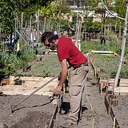 Venezia - Orti della Giudecca. Michele Savorgano al lavoro.<br /> Venice - Giudecca. Vegetables garden in the city center. Michele Savorgano, farmers.