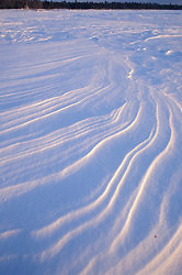 Wind patterns on snow on Maine's Chesuncook Lake.