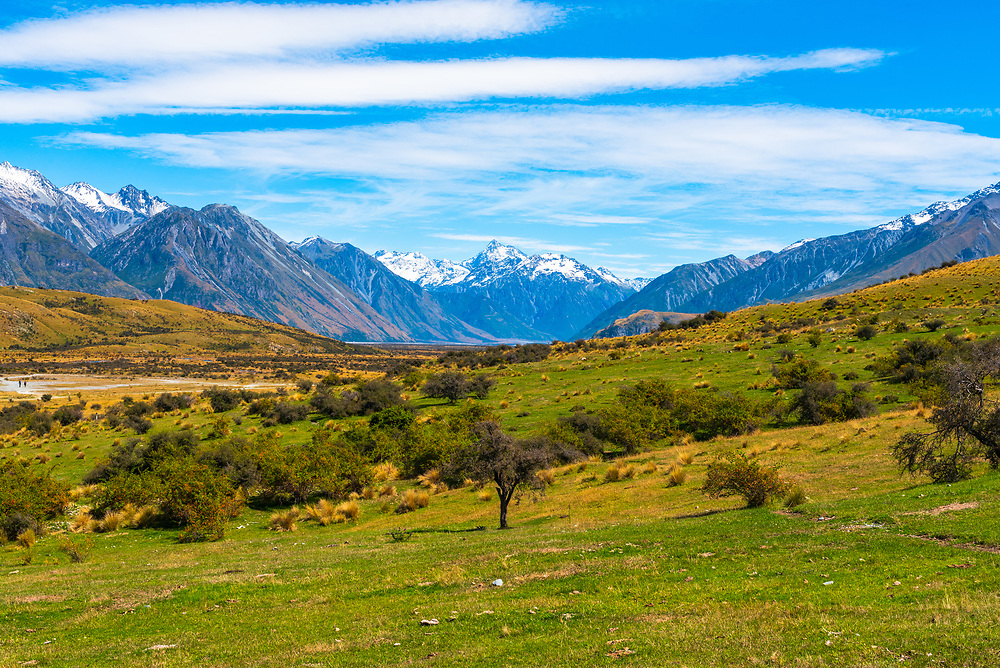 A green valley in New Zealand in the midst of snowcapped mountains.