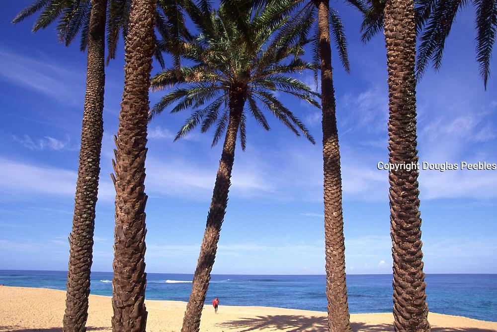 Sunset Beach, North Shore, Oahu, Hawaii<br />