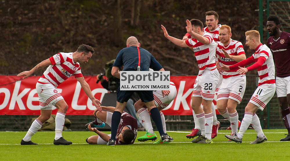 Heart of Midlothian players protest against #18 Igor Rossi Branco (Heart of Midlothian) • Hamilton Academical v Heart of Midlothian • Ladbrokes Premiership • 24 January 2016• © Russel Hutcheson | SportPix.org.uk