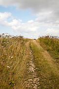 Uphill section of the ancient Ridgeway pathway crossing chalk downland near Liddington Castle, Wiltshire, England, UK