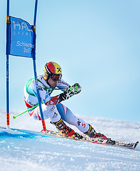15.02.2013, Planai, Schladming, AUT, FIS Weltmeisterschaften Ski Alpin, Riesenslalom, Herren, 1. Durchgang, im Bild Marcel Hirscher (AUT) // Marcel Hirscher of Austria in action during 1st run of the Mens Giant Slalom at the FIS Ski World Championships 2013 at the Planai Course, Schladming, Austria on 2013/02/15. EXPA Pictures © 2013, PhotoCredit: EXPA/ Johann Groder