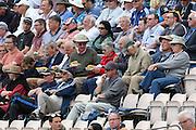 Spectators enjoying fish and chips for lunch during the Royal London One Day International match between England and New Zealand at the Ageas Bowl, Southampton, United Kingdom on 14 June 2015. Photo by Phil Duncan.