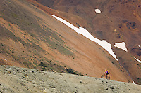 A lone rider ascends a ridge within the Taylor Basin area enroute to the summit of Camel Pass in the Southern Chilcotin Mountians.  Southern Chilcotin Mountains, British Columbia, Canada.