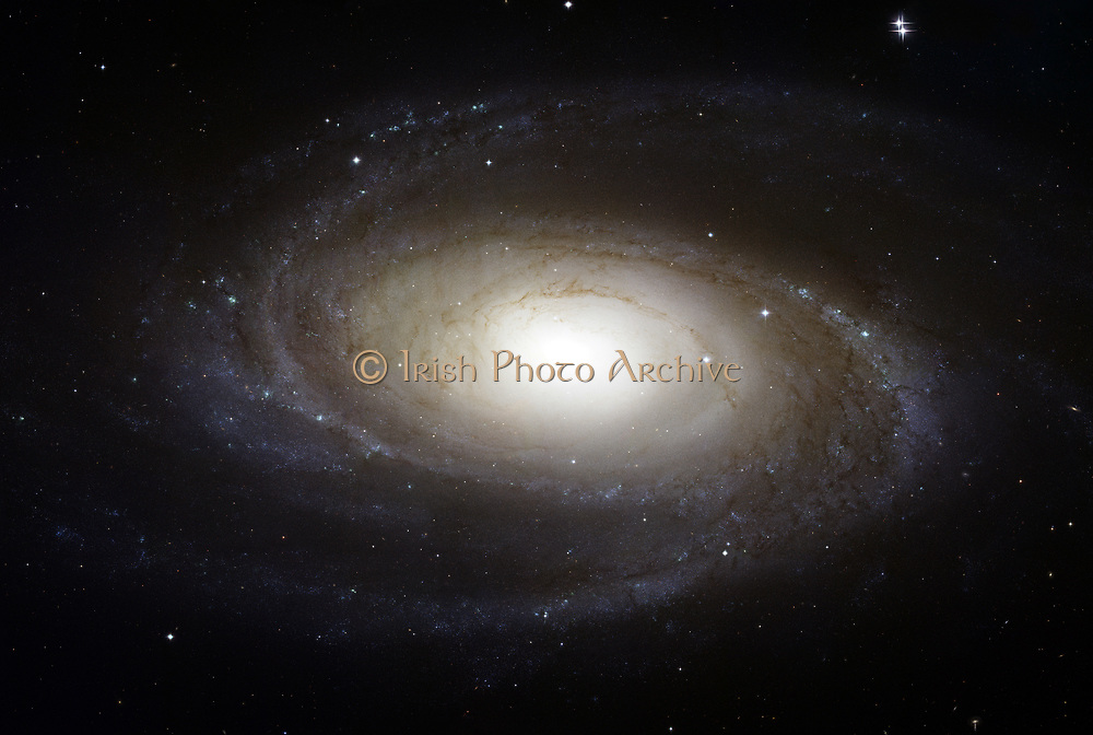 Bright Spiral Galaxy M81 viewed from the Hubble  telescope. Credit NASA. Science Astronomy Stellar Space