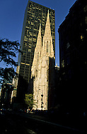 New York. the cathedral Saint Patrick on fifth avenue   /  la cathedrale saint patrick sur la cinquieme avenue   /  Vide