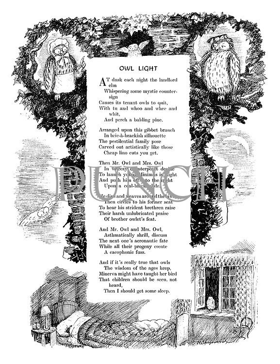Owl Light (illustrated poem).