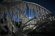 The sun shows its brilliance through ice formations Friday along Lake Michigan in Port Washington. jeffrey phelps