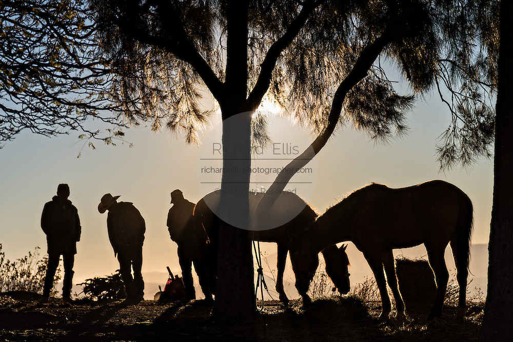 Mexican cowboys at sunrise after spending the night on Cubilete Mountain during the annual Cabalgata de Cristo Rey pilgrimage January 6, 2017 in Guanajuato, Mexico. Thousands of Mexican cowboys and horse take part in the three-day ride to the mountaintop shrine of Cristo Rey.