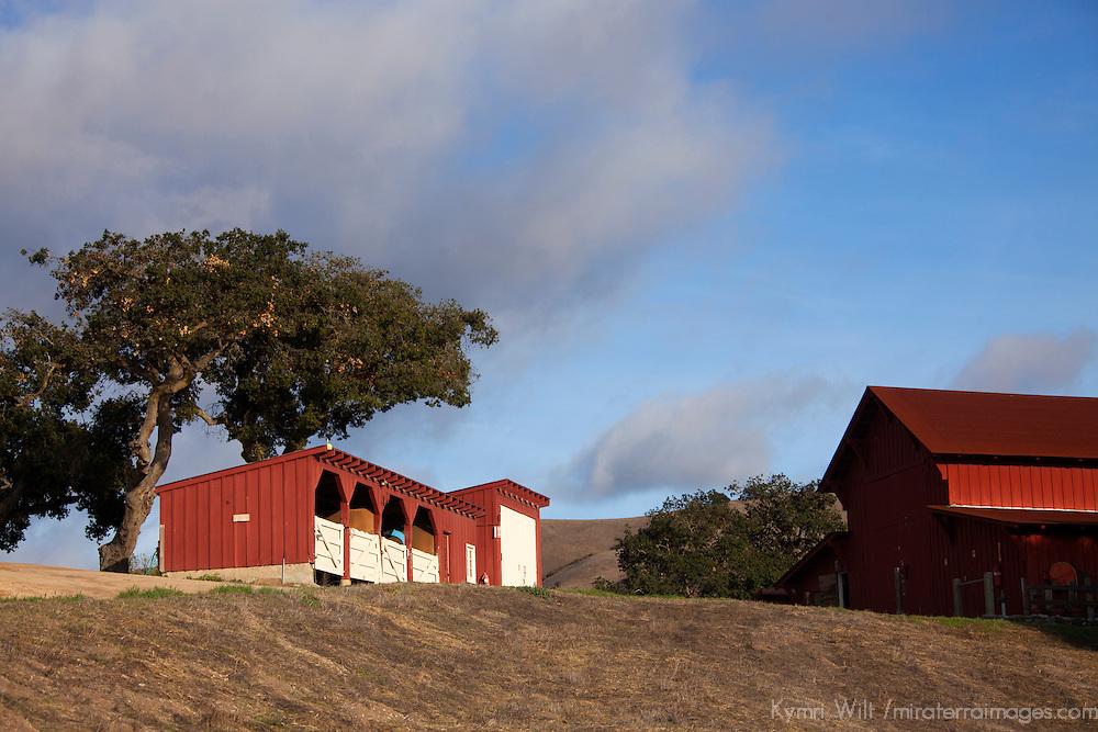 USA, California, Carmel. Holman Ranch Stables.