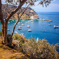 Avalon Bay Catalina Island picture with the Catalina Casino from above in the mountains. Santa Catalina Island is of the coast of Southern California and is a popular travel and vacation destination.