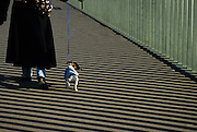 Woman walking dog on leash, Pont Saint Louis, Paris, France
