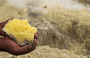 Sulphur Crystals from Mina de Azufre (Sulphur fulmeroles) behind<br /> inside crater of Sierra Negrá Volcano (second largest volcanic crater in the world)<br /> Isabela Island<br /> Galapagos Islands<br /> ECUADOR.  South America