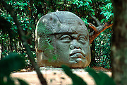 MEXICO, TABASCO, OLMEC giant stone head in La Venta Museum