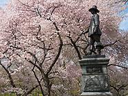 Central Park-Pilgrim Hill
