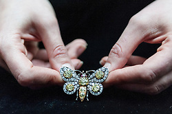 © Licensed to London News Pictures. 26/02/2016. London, UK. A Sotheby's staff member shows a white gold butterfly brooch.  Property from the personal collection of Deborah, Duchess of Devonshire (1920-2014), will be offered for sale at Sotheby's on 2 March,  The youngest of the Mitford Sisters, the Duchess was the chatelaine of Chatsworth, one of England's greatest stately homes, and at the heart of British rural, cultural and political life.  The proceeds of the items in the eclectic collection are expected to realise £500,000 to £700,000. Photo credit : Stephen Chung/LNP